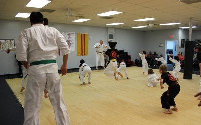 Karate? Tae Kwon-Do? Hapkido? Judo? Kung Fu?